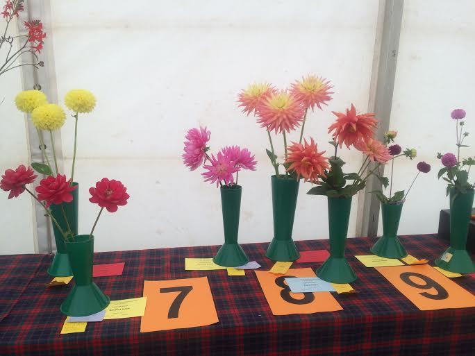 KINROSS-show-2015-flowers-vases