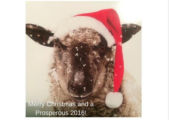 sheep wearing santa hat